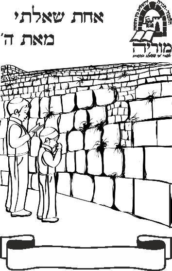 עטיפות לסידור בית ספר תלמוד תורה מוריה-ירושלים